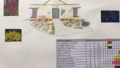 Massif Direction Générale avec calendrier de fleurissement